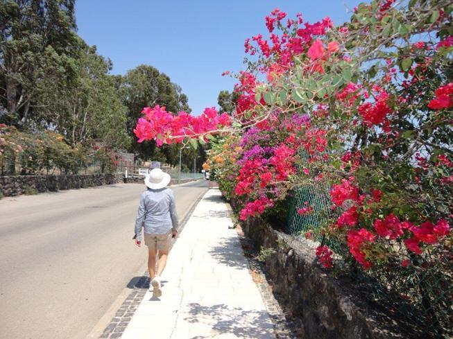 http://www.noticiasespiritas.com.br/2019/JANEIRO/04-01-2019_arquivos/image050.jpg