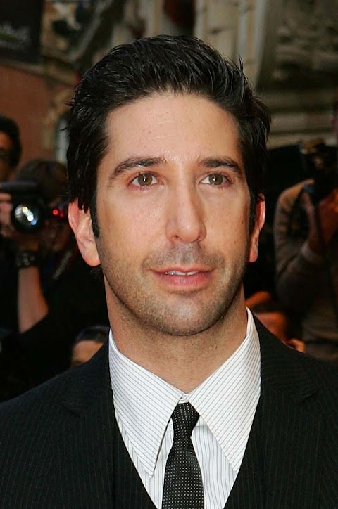 David Schwimmer Movies And Tv Shows
