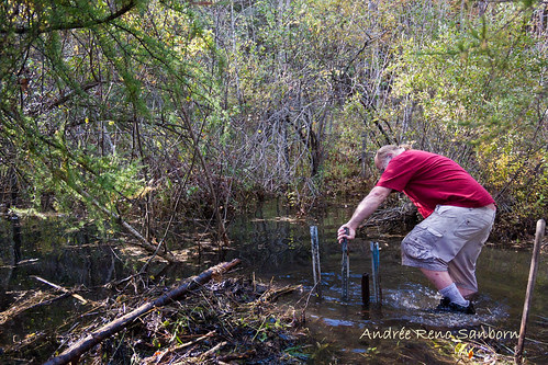 Clearing Out a New Beaver Dam  (8 of 9).jpg