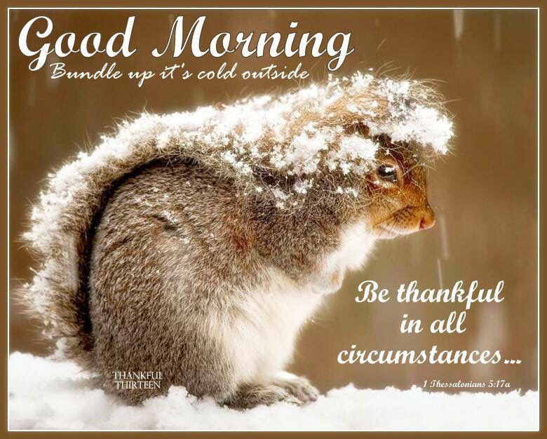 Good Morning Bundle Up Its Cold Out Pictures Photos And Images For