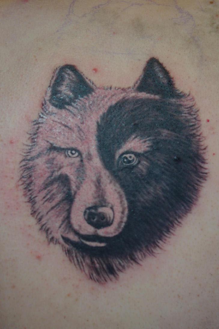 Yin Yang Wolf Tattoo Agcrewall