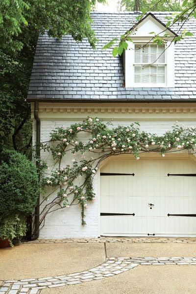 garage door & vine