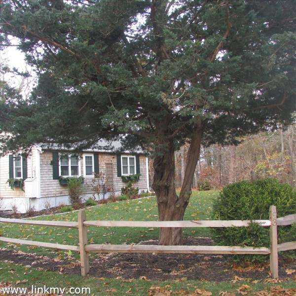 Single Family Oak Bluffs Marthas Vineyard Property For Sale