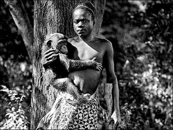 Imagens terríveis de zoologicos humanos