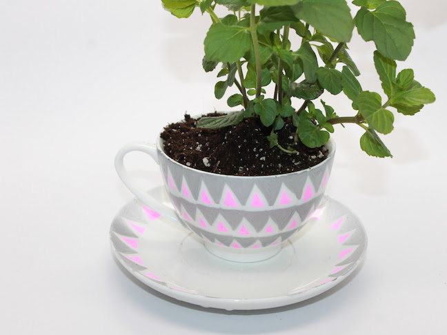 How To Design A Diy Mothers Day Teacup Garden