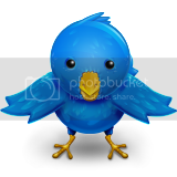 Twitter Bird Pictures, Images and Photos