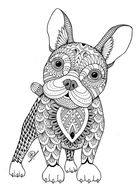 animal coloring pages doodle images  pinterest