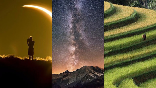 Click here to read These Smithsonian Photo Contest Finalists Are Each Stunning in Totally Different Ways