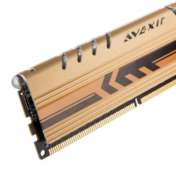 Avexir Core Gold (2)