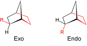 Endo and exo isomerism in norbornyl systems