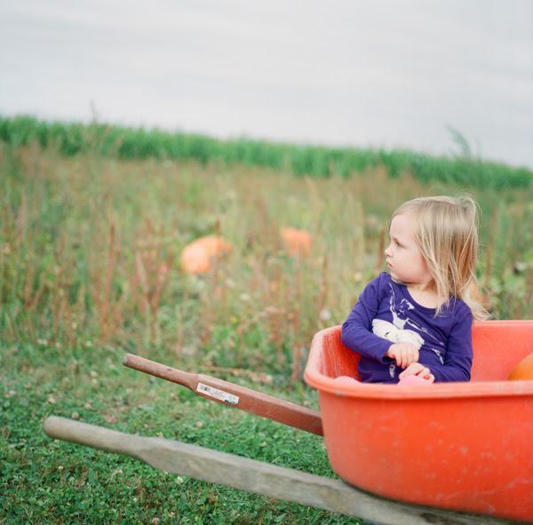 2012_0929_Pumpkins07.jpg