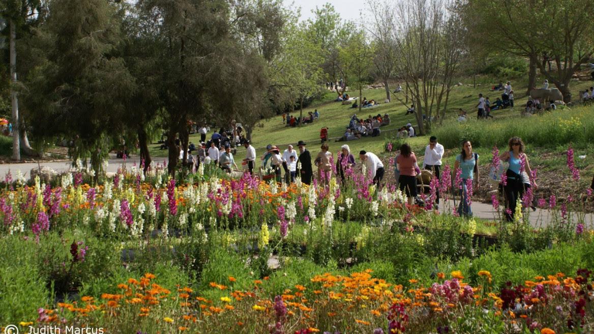Visitors enjoying the Jerusalem Botanical Gardens last April. Photo by Judith Marcus