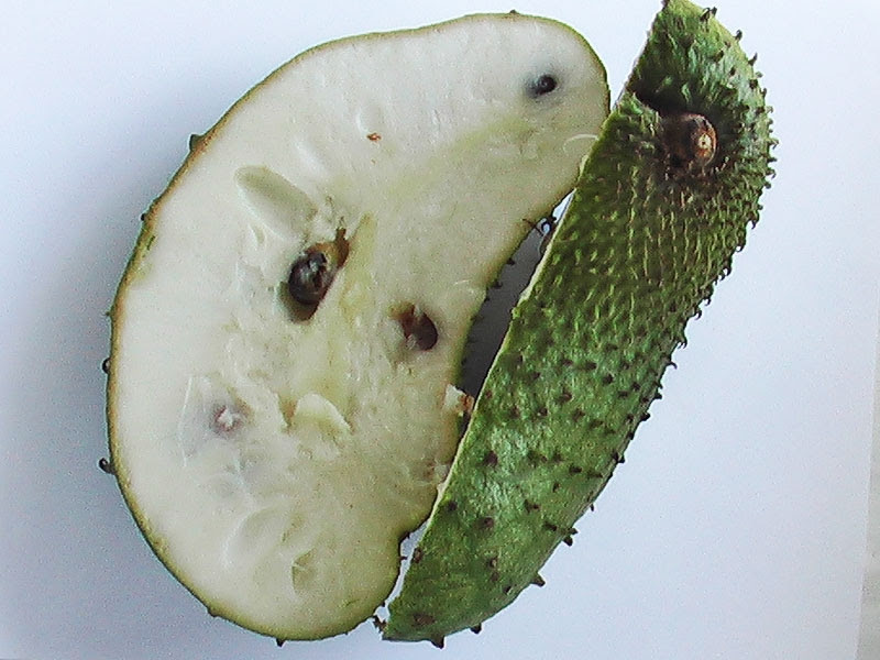 Soursop for Health Benefits
