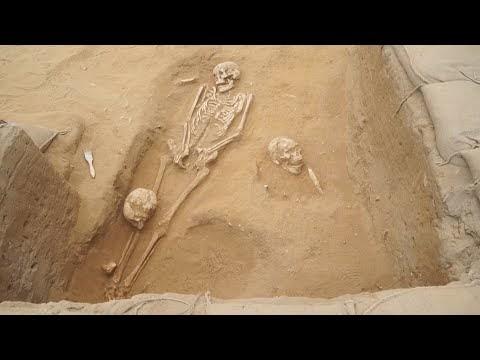 Estudo comprova origem europeia dos filisteus