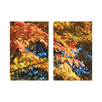 Golden Autumn Leaves Canvas Print Gallery Wrapped Canvas