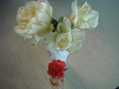 Roses for June 7, 2009