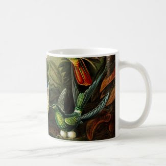 Haeckel Hummingbirds Classic White Coffee Mug