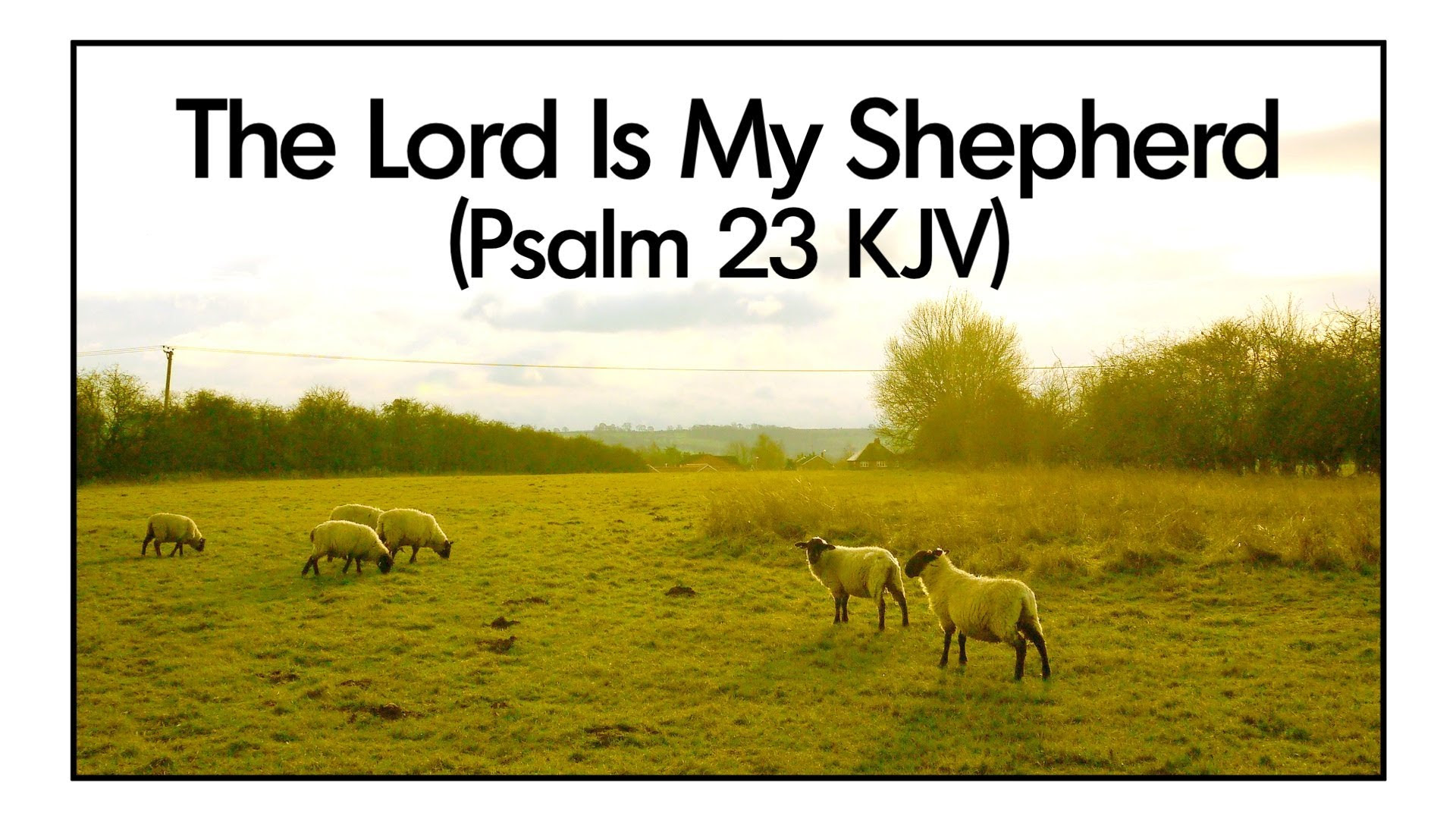 The Lord Is My Shepherd And I Don T Have To Want