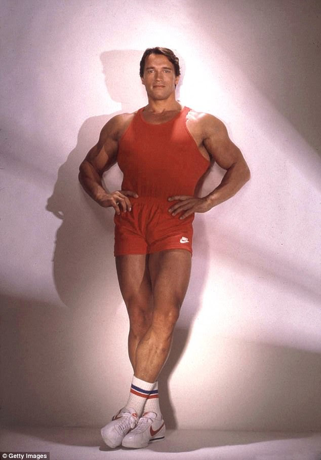 Hercules: Arnoldbegan his career as a professional bodybuilder before embarking on acting and political pursuits (pictured in 1985)