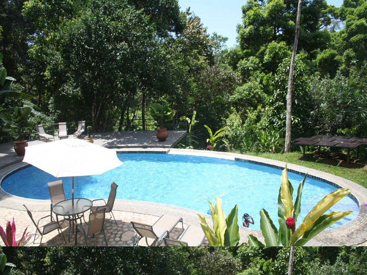 Large Backyard Pools
