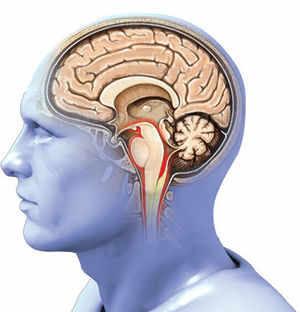 Alzheimer's risk: Blood test can tell