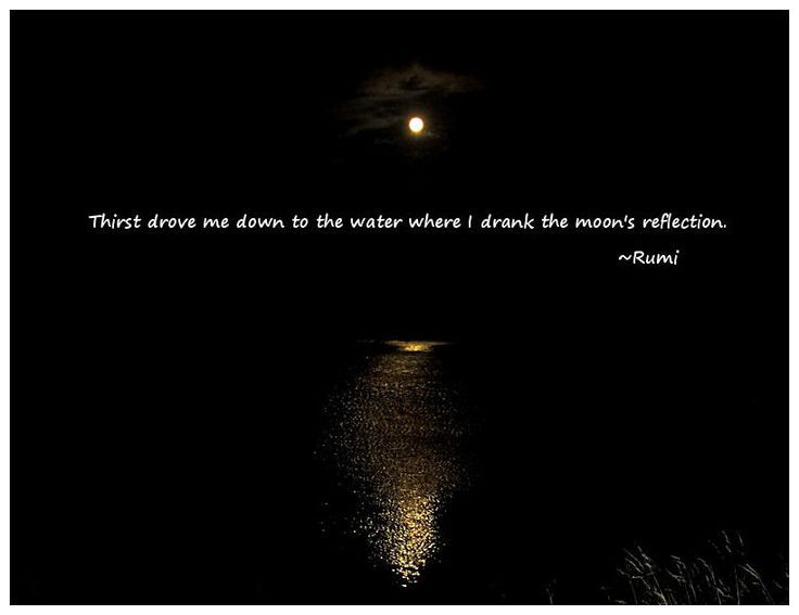 Quotes About Water Reflection 24 Quotes