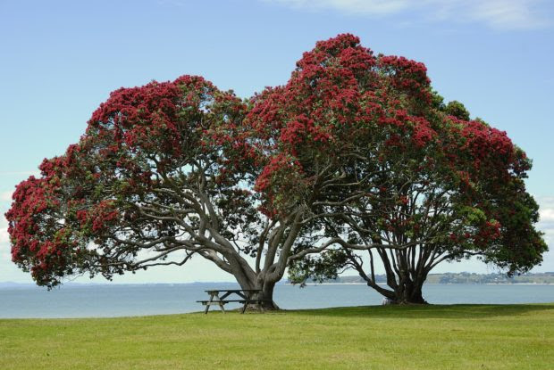 4 Hot Destination Spots for Beautiful Golfing Greens
