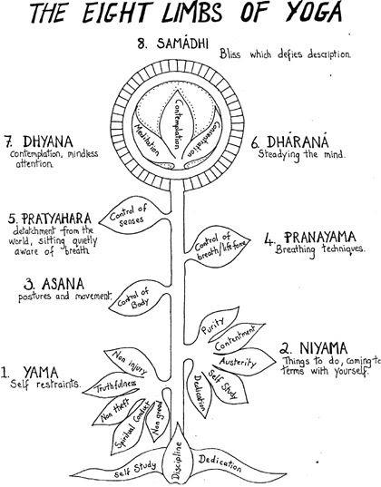 The Eight Limbs of Yoga