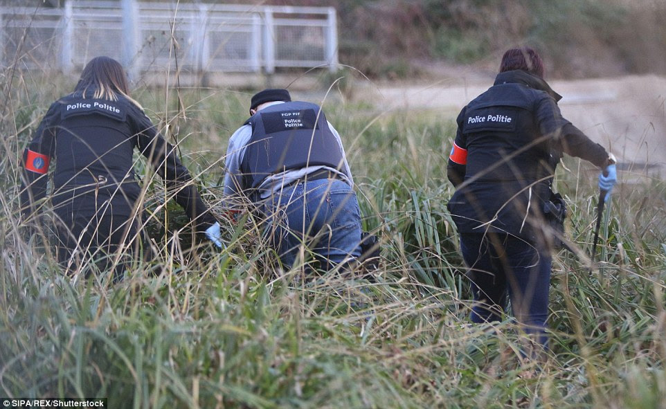 Combing the verge: Police detectives were today out in force to gather evidence which could help find those behind today's atrocities