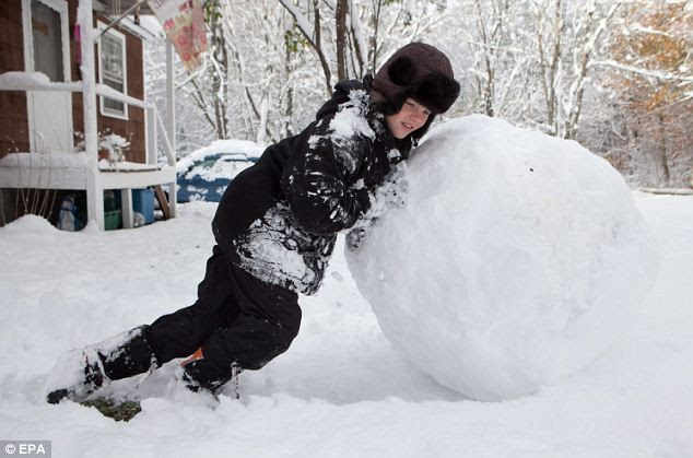 Roll it up: Ten-year-old Raven Hendrix builds a snowman in Townshend, Vermont, today