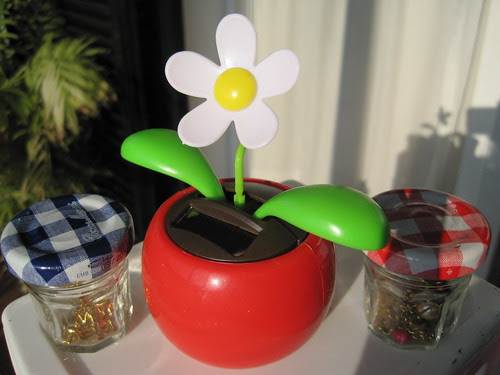 Dancing sun pot