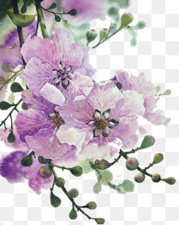 Pink And Purple Flowers Png