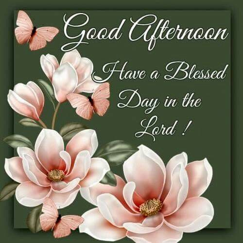 Good Afternoon Have A Blessed Day In The Lord Pictures Photos And