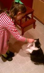 Gracie hand-feeding treats to Josie