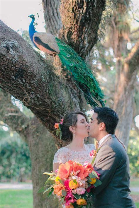 Flamingo Gardens Wedding   Fine Art Wedding Photography by