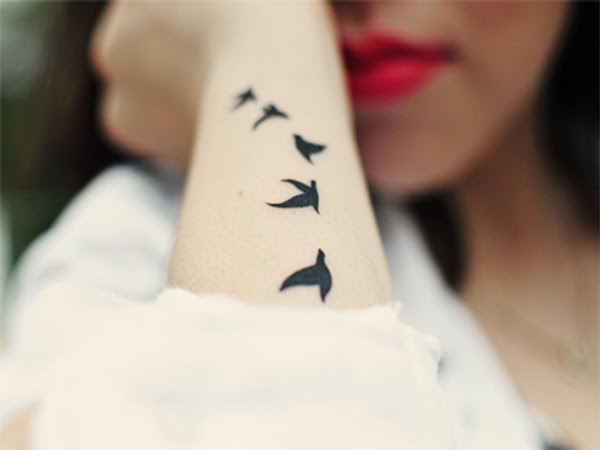 Significado De Tatuajes De Aves