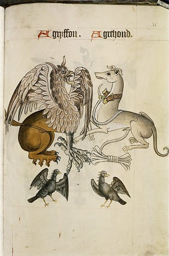 Griffon and Greyhound. Two fierce-looking birds.