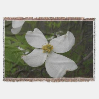 Dogwood Blossom Throw Blanket