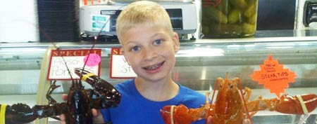 Tony Sarro holds up a normal lobster and one of the rare half-dozen orange lobsters. (Photo courtesy Bill Sarro)