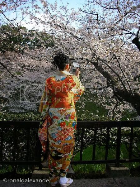 jepang Pictures, Images and Photos