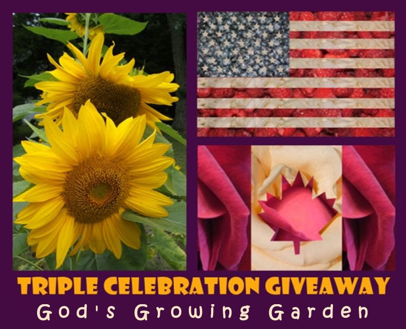 3 years by Angie Ouellette-Tower for godsgrowinggarden.com photo GiveawayTCG_zps998a35a4.jpg