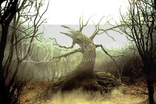 photo sleepy-hollow-tree-of-the-dead-2_zps20d3ae75.jpg