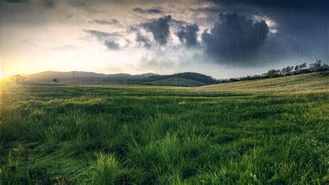 April Showers   HD Wallpapers