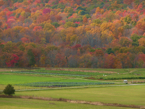 Hudson Valley farm in autumn