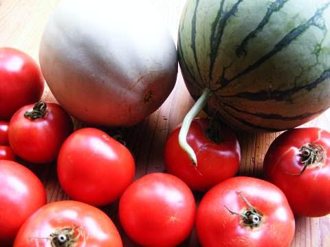 スイカ、メロン、トマト