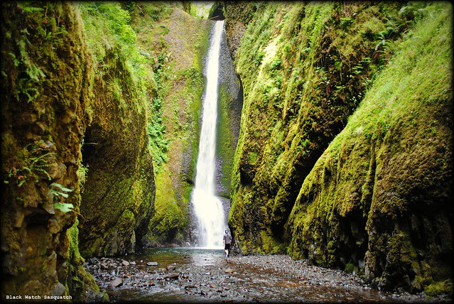 A hiker about to take a cold plunge at the waterfall at the end of Oneonta Gorge