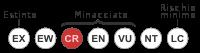 Status iucn3.1 CR it.svg