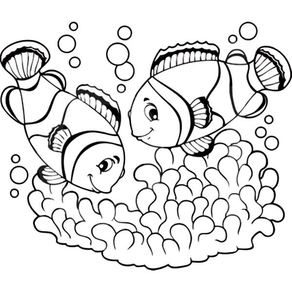 Clown Fish Picture Coloring Pages | Best Place to Color
