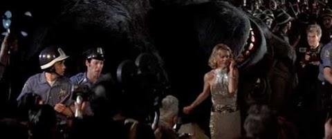 Where Was King Kong 1976 Filmed