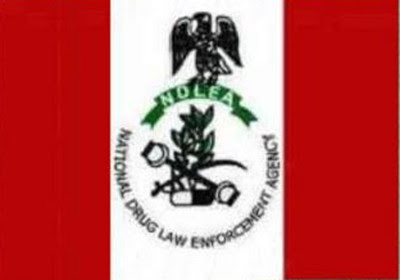 New ways to launder cash, by NDLEA